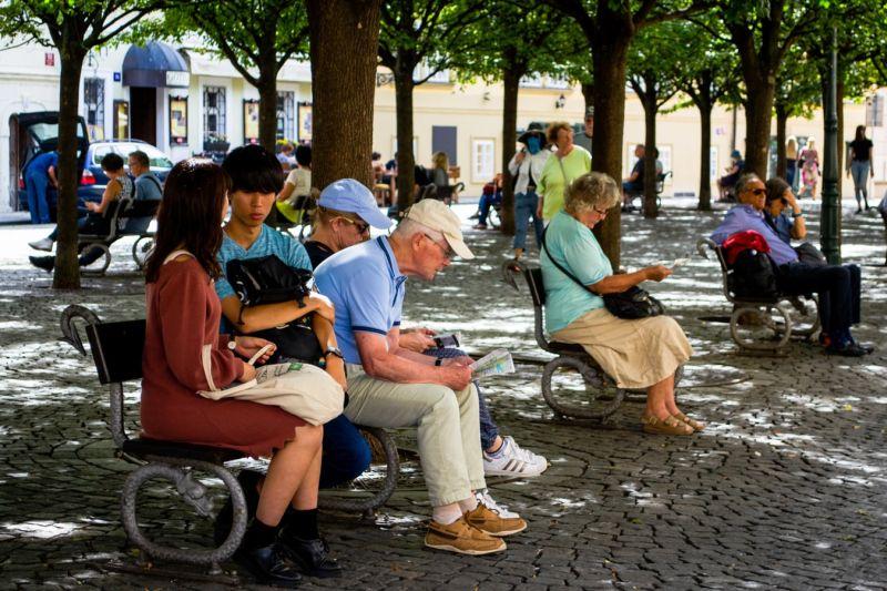 persone sedute su una panchina all'ombra di un parco